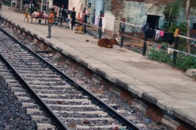 02 Delhi - Gorakhpur_20