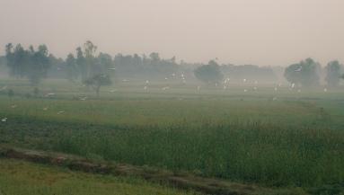 02 Delhi - Gorakhpur_21