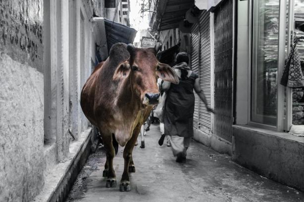 04 Nepal - Varanassi_23