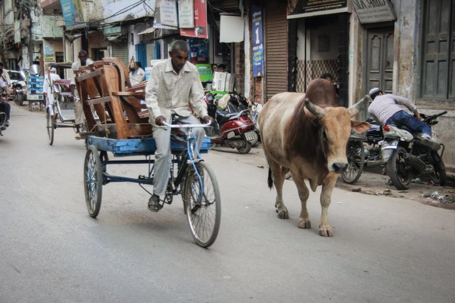 04 Nepal - Varanassi_30