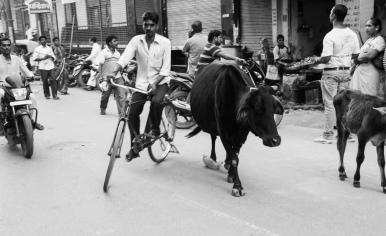 04 Nepal - Varanassi_31